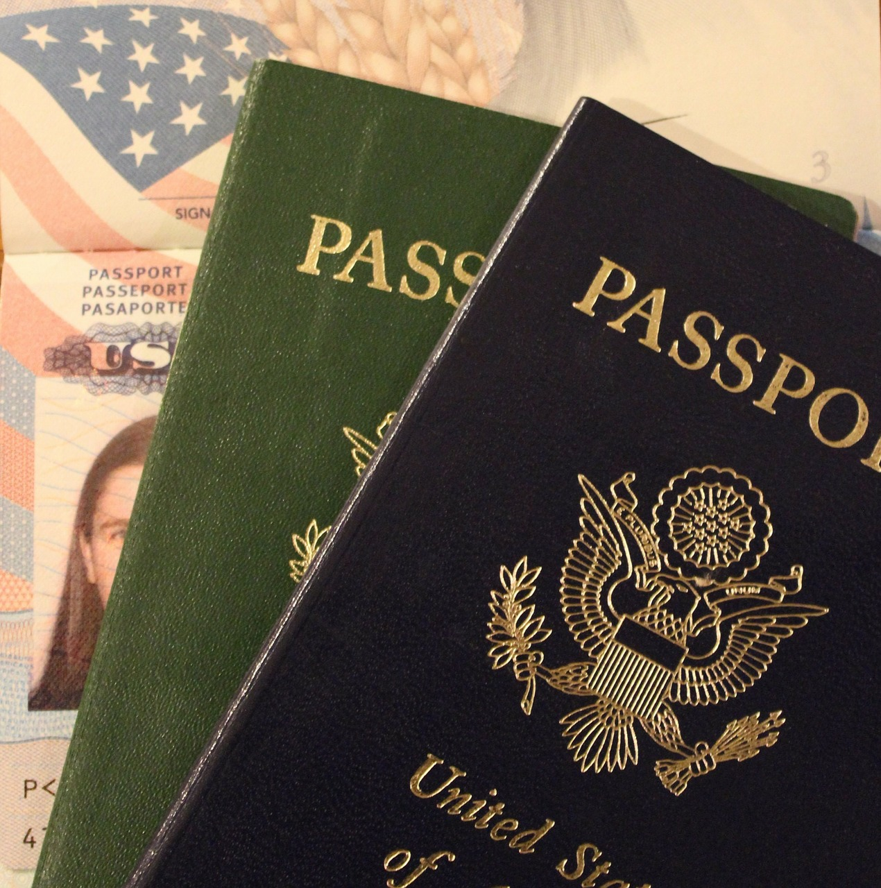 Problem deportacji oraz proces odwołania
